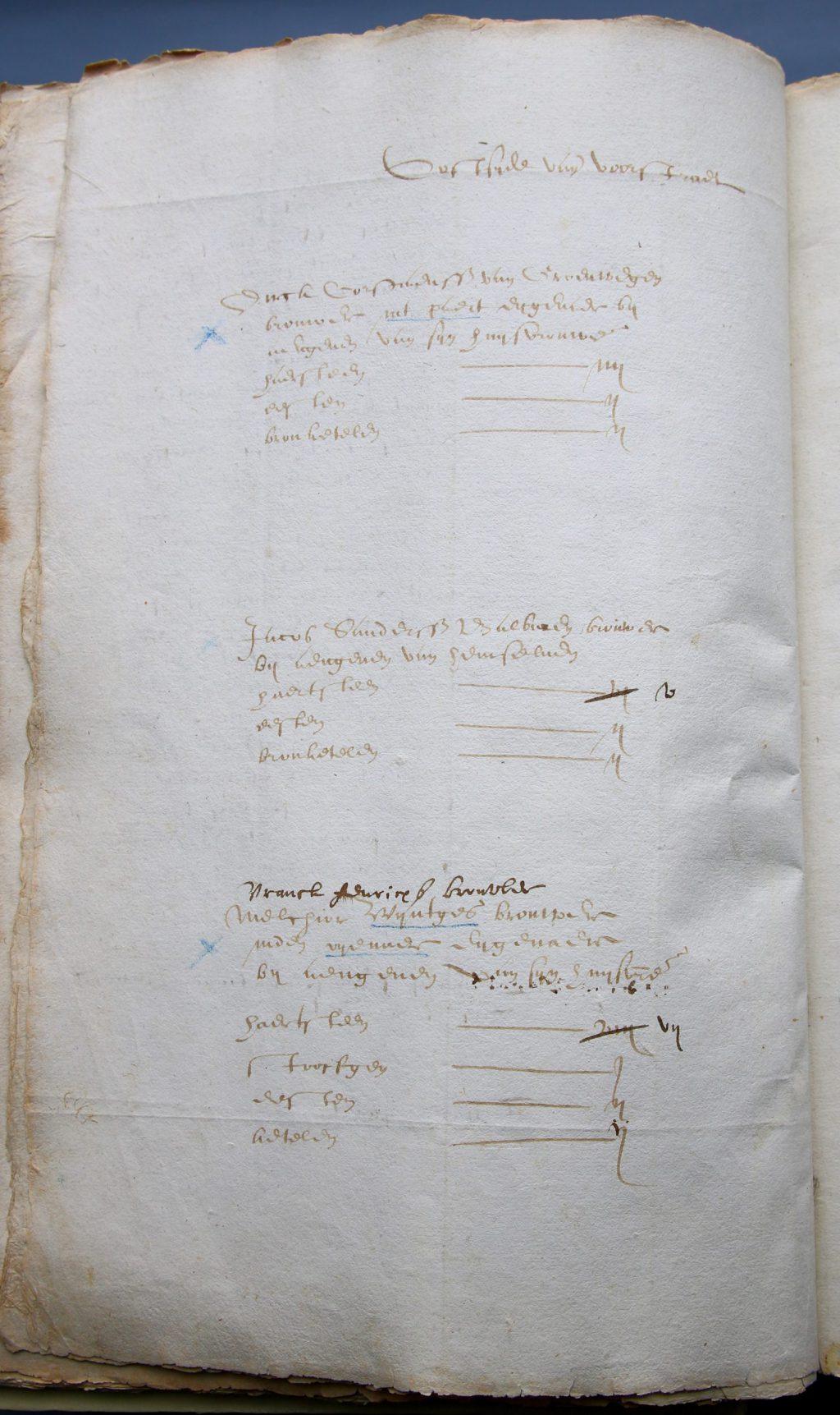 Bladzijde uit het haardstedenregister, 1600 (Archief 1, inv.nr 4081, folio 35v)